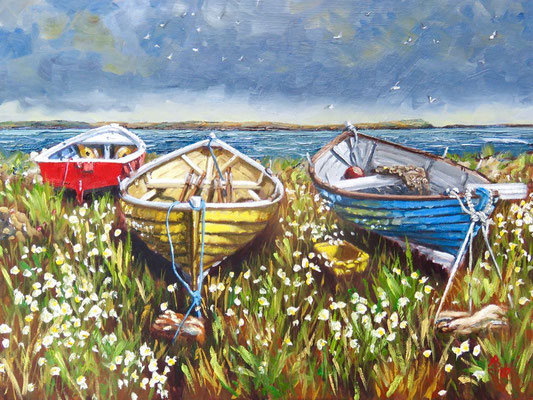 Dozing among the Daisies, Shetland Islands - Oil 12 x 16 inches (30.5 x 40.6 cm). Special Merit in Light Space & Time international competition 2020.   Available through www.scotlandart.com