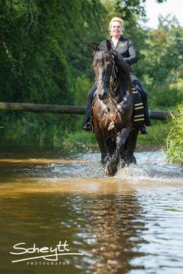 Fast alle Pferde fingen sehr schnell an zu plantschen...