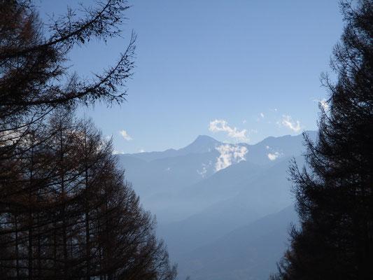 ここからは日本第二の高峰の北岳山頂もきれいに望めました