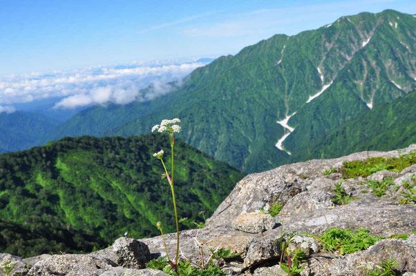 大日岳から連なる牛首山や櫛ヶ岳のほう