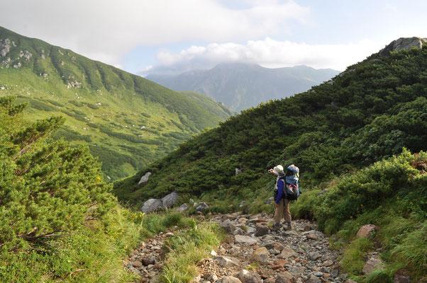 巻道と行ってもいったん谷に下ったり(下ればまた登り返さねばならない)それなりの道 遠く雲のかかっている山の鞍部まで、まだ遠い