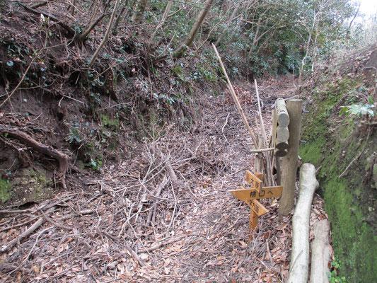 下山地点の「大原」分岐 ここも縦走コース向こうは堆積物でいっぱい