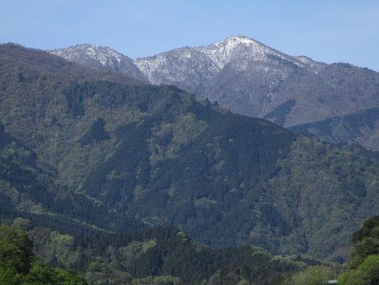 ちょっとアップにした蛭ヶ岳 この白さも昼頃にはずいぶんと溶けてしまいました