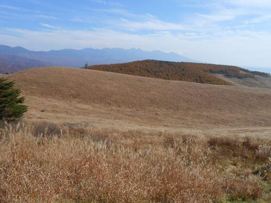 カシガリ山と遠望八ヶ岳