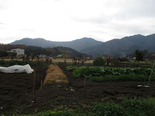 下界に下りて、西山方面を見る 左に荻野高取山 そして中央に双耳峰の華厳山 右端のピラミダルなのが経ヶ岳