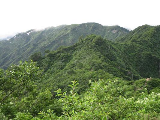 明日辿る山稜 見るより実際は険しく厳しい登山道でした