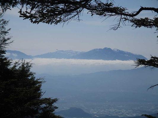 山頂付近からは妙高山が雲上に見えました