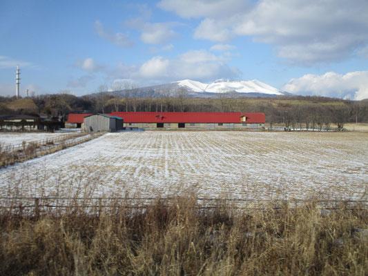 室蘭本線から乗り換え「スーパーおおぞら」で東に向かっても雪はほとんどなく、期待した冬の白い世界にならない