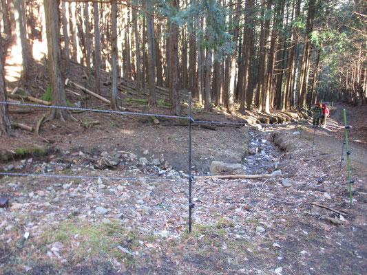 イノシシ被害を防ぐために、一帯はぐるり電気柵を張り巡らしている