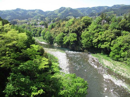 多摩川の清流と新緑を見下ろす