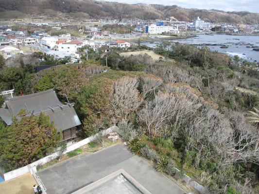 登れる灯台 上から見下ろす厳島神社の境内 まともに海風を受ける場所で全体茶色くなっている