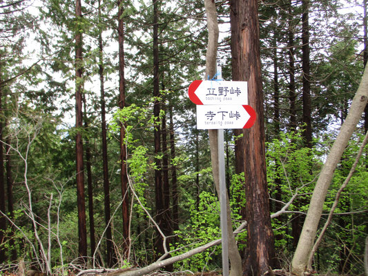 当日歩いた峠と峠の標識