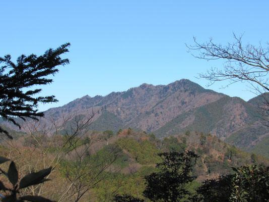木が切れたところからきれいに見えた仏果山方面