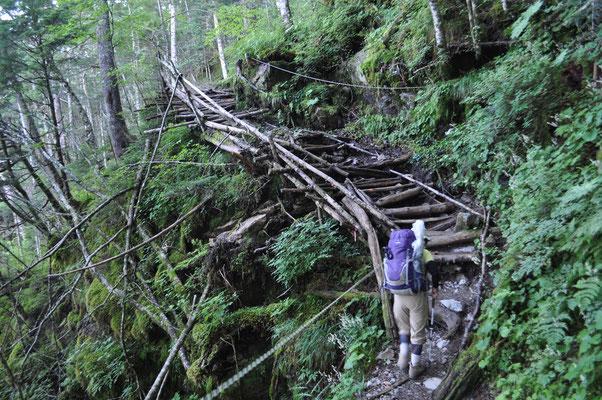 三伏峠への登りはだんだんと厳しくなり、途中はこうした木の桟道が何箇所もあります 登りはともかく、雨の下りでは滑りやすく少々難儀しました