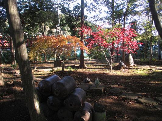 沓掛館山の紅葉