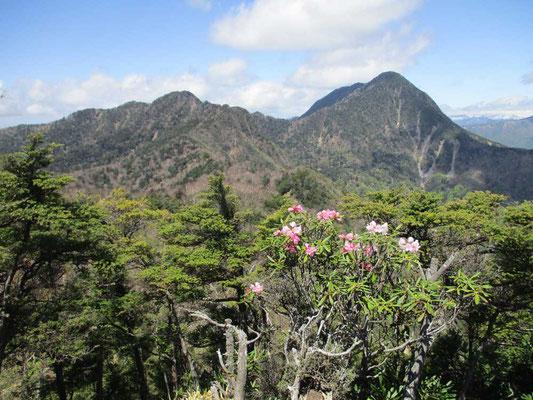 当日はガスの中の急登であまり暑くなくて助かりました。しかし山頂の見晴台ではここだけ晴れているのか?と言った好天で、目の前の皇海山や日光・尾瀬方面までよく見えました