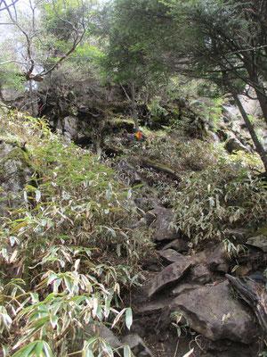 コースタイムでは2時間近く岩場の登りがつづくようでしたが、それより随分早く最後の稜線への急登の所にこぎつきました