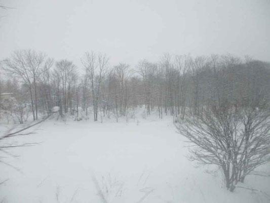北海道から別れる頃には、吹雪いていました