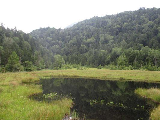 人が殆どいない、とても静かな湿原ですっかり気に入ってしまいました
