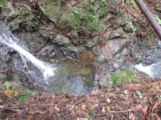 寺下峠から下山した集落近い沢筋 小さいけれど二段の滝がありました 雨のせいでそこそこの水量でできたのでしょうか