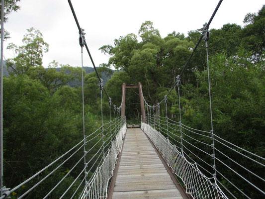 ヨッピ橋の吊橋、渡るときはユラユラと揺れます