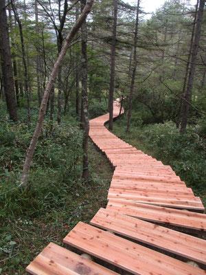 入笠湿原への真新しい木道階段 ここに入る時には鹿よけの重々しい鉄の扉を通る