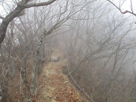 霧が深くなってきて〜山頂では何も見えなくなっていました