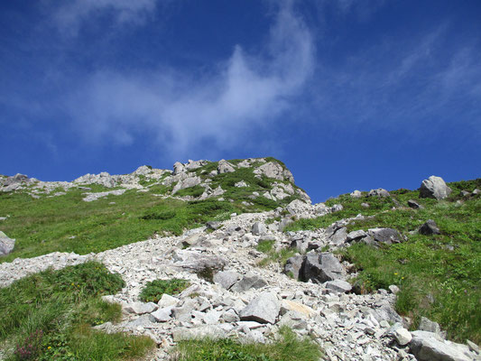 青空に生える白っぽい花崗閃緑岩