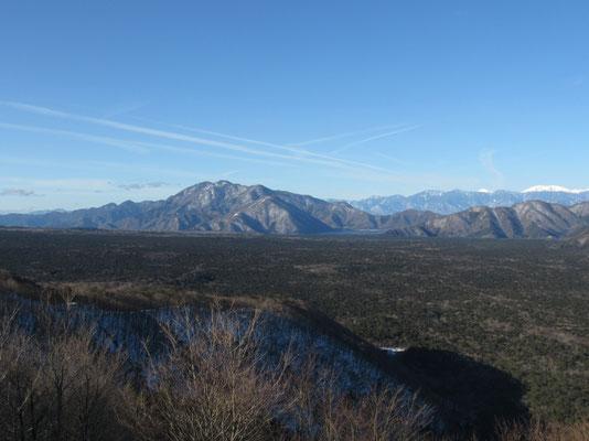 青木ヶ原の樹海の向こうには天子山塊 奥に小さく見える白は聖岳と右が赤石岳