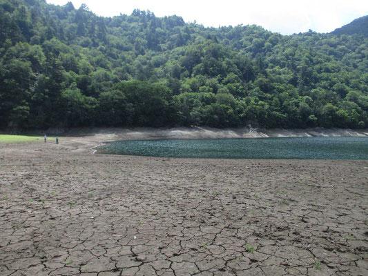 湖に少し近づくと地面はひび割れているのがよくわかります