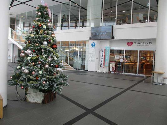 最近建て替わった近代的な稚内駅構内 大きなクリスマスツリーが飾られていました