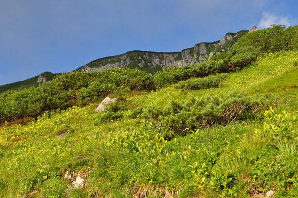 下から見上げても不思議な地形だが、翌日この上の稜線を歩き、上もまたもっと不思議なことになっていた