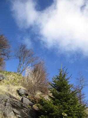 山頂直下から空を見上げる
