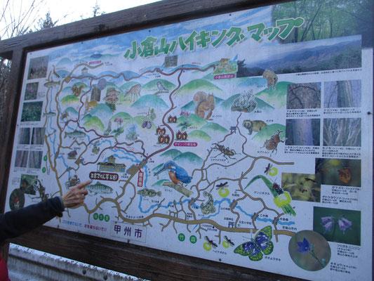 入口に設置してあるハイキングコースの看板 展望台以降はこれよりずっと山らしい山だった