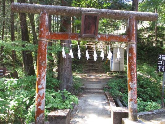 登山口の鳥居 登り道の途中には琴平神社が祀ってありました