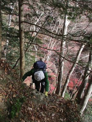 急登を登ります