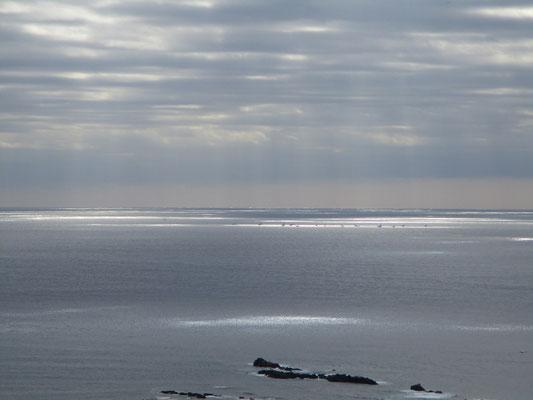 ちょうどその陽の射しているいるところに船がたくさん集まり漁をしている