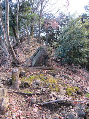 所々、こうした岩稜っぽい箇所もあります