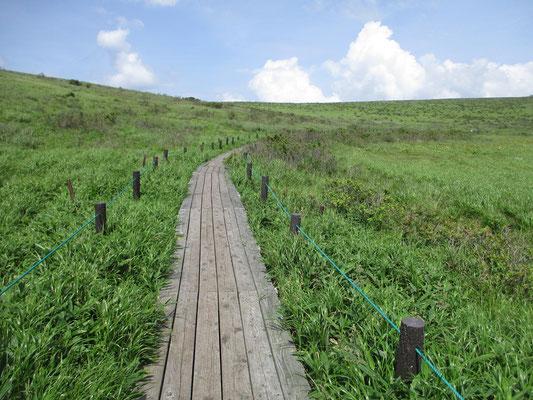 だんだんと一般登山道に近づくと木道も整備された箇所になる