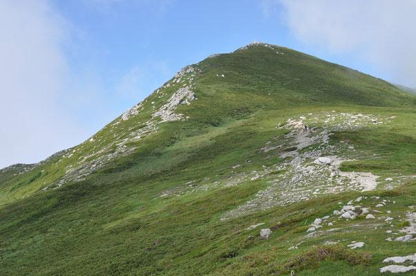 山頂 あそこでピストンして帰る人も多いようだが(百名山キラー)本命はここから先のお花畑