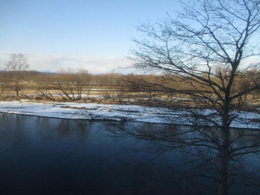 殆ど凍結していない釧路湿原のなかの川