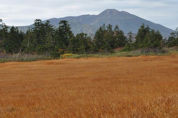 湿原越しに秋田駒ヶ岳 湿原散策の時にはまだ天気が持っていました