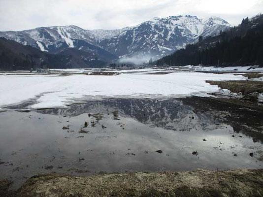 雪解けの田んぼに映る八海山