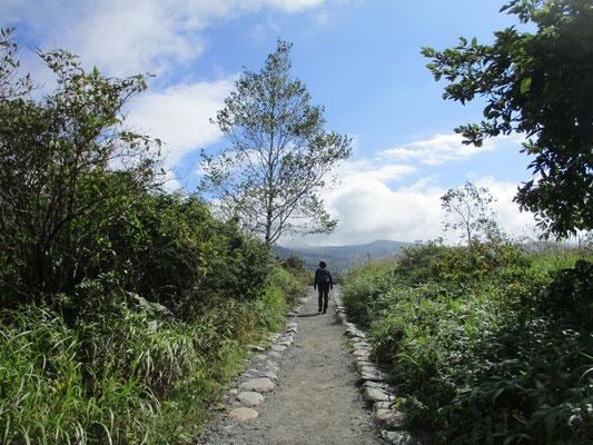 八島湿原に向かう路