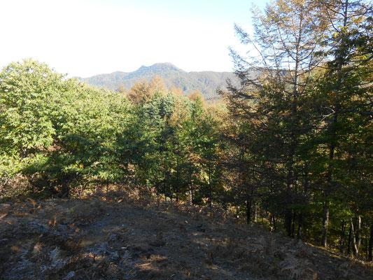 向こうに黒川鶏冠山が見えます