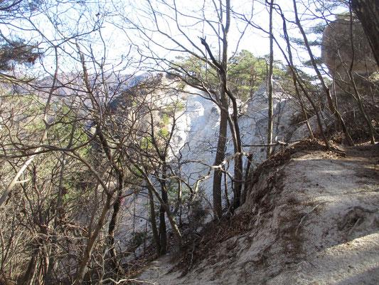 しばらく行くと、今までの山道とはまったく雰囲気を変える