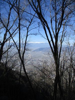 梢越しに南アルプスの三千メートル級の白嶺が見える