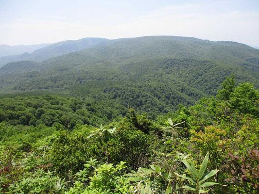 山頂からは遙かに緑の連なりがつづき奥深さを感じます