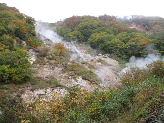 湯けむりというより恐ろしげな地獄谷のような脇をまず登っていきます 迫力満点