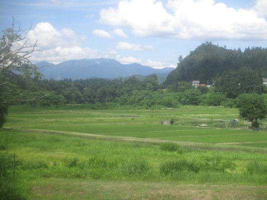 出発した只見線は水田の広がる新潟県から山深い福島県に向かっていきます